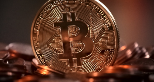 Bitcoin 310x165 - Freier Handel von Bitcoin Reference Line startet